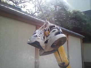 20080316_shoes