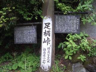 20090516_ashigara1