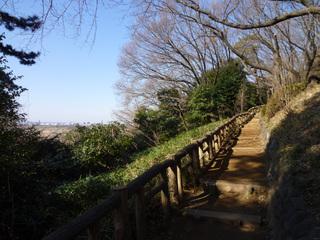 20100130_tamagawa1