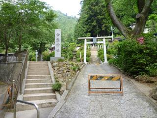 20100612_imakuma