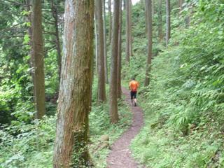 20100711_trail