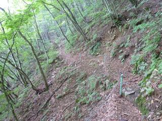 20100807_trail