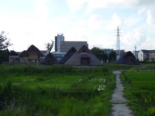 20100728_toro