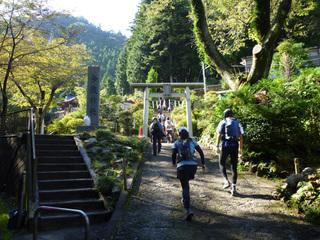 20101010_imakuma