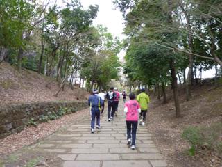 20110403_ryokudou2
