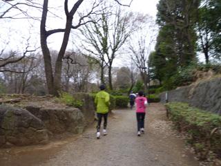 20110403_ryokudou3