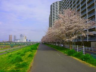 20110410_gasubashi