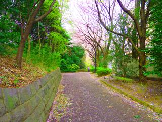 20110410_ryokudou