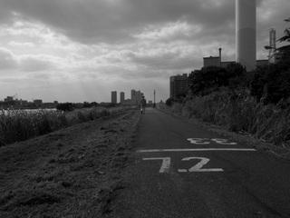 20110721_tamariba2