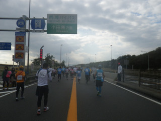 20121103_seishou
