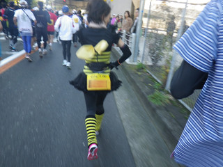 20121125_bee