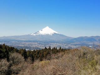 20130316_fuji